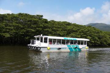 西表島と由布島ツアー、グラスボトム ボート ツ…