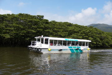 Iriomote and Yubu Island Tour