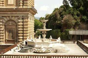 Evite las colas: visita a pie al Palacio Pitti y la Galería Palatina