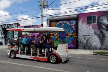 Fort Lauderdale Sightseeing Tour
