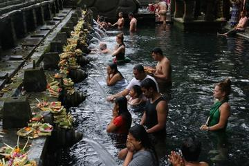 Ubud in One Day Sightseeing Tour including Lunch
