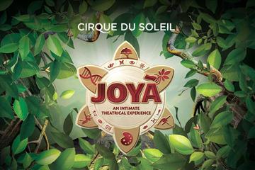 JOYÀ del Cirque du Soleil® da Playa del Carmen