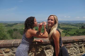 Excursão por vinícolas na Toscana