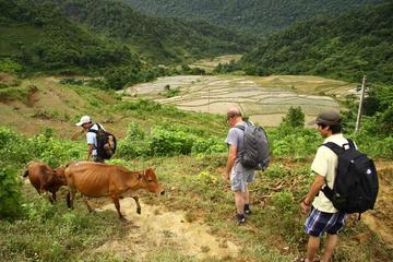 Tour de senderismo privado de 3 días: Reserva natural de Pu Luong con...