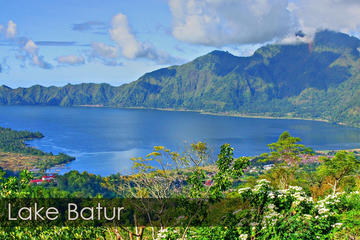 Full-Day Best of Bali Sightseeing Trip with Buffet Lunch
