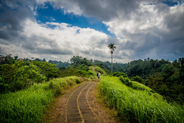 Full-day Campuhan Ridge Walk Combination Tirta Empul & Temple