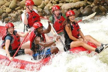 Sarapiquí River Whitewater Rafting Tour