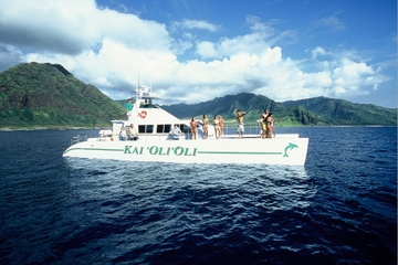 Croisière en catamaran à Oahu: faune et flore, plongée avec un tuba...