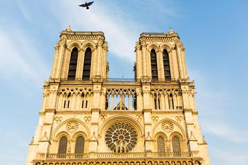 Excursión a la catedral de Notre Dame y crucero por el río Sena