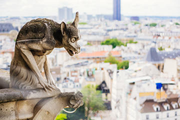Skip the Line: Guided Tour of Notre Dame Cathedral Towers