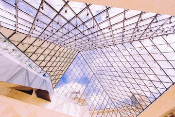 Toegang zonder wachtrij tot het Louvre met lokale gids