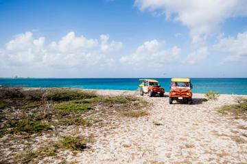 Excursão Off-Road de Aruba incluindo Piscina Natural e Baby Beach