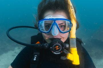 Discover SCUBA Diving Phi Phi Island