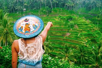 Bedste tur: Ubud Village and Temples...