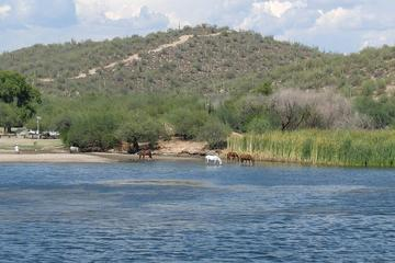 Desert Belle Live Music Cruise on Saguaro Lake