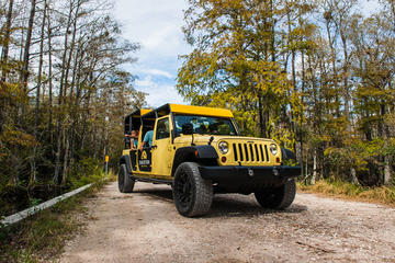 Privétour: Everglades-sightseeing in Big Cypress National Park