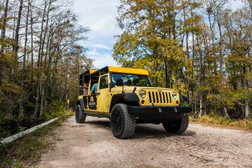 Tour privato: tour panoramico delle Everglades e della Big Cypress