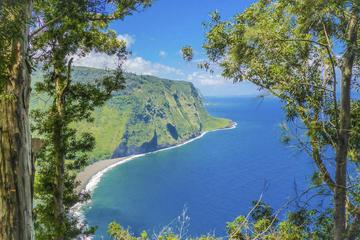 プライベートツアー: ハワイ島の冒険