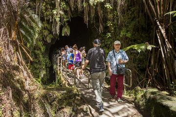 Excursão para grupos pequenos pelos destaques do Parque Nacional dos...