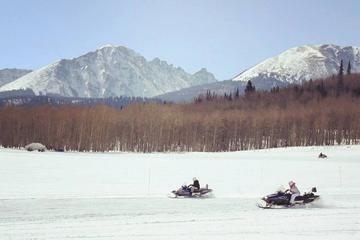 Scenic Colorado Snowmobile Tour
