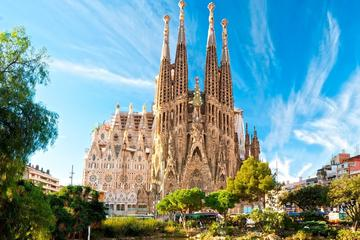 360 Gaudi Tour with Sagrada Familia and Park Guell