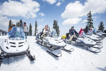 Snowmobile Tour & Mountain Hut overnight with breakfast & dinner in Andorra