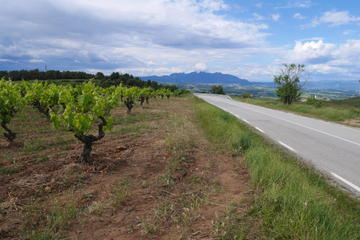 Tour di Penedès in 4x4 da Barcellona con degustazione di vini