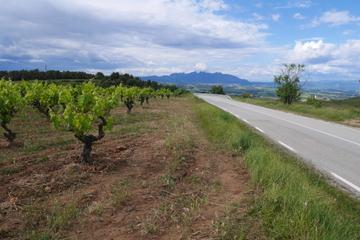 Tour vanuit Barcelona naar Penedes in een 4x4, inclusief wijnproeverij