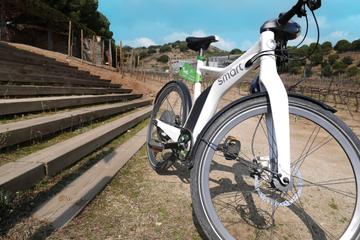 Visite de Barcelone en vélo électrique : visite du vignoble Alta...