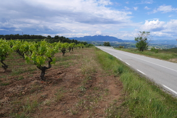 Weinführung im Geländewagen durch Penedès von Barcelona