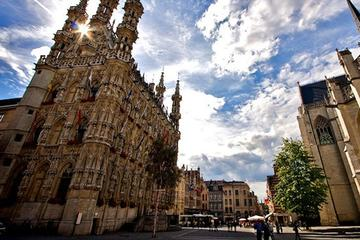Leuven Guided Tour from Brussels