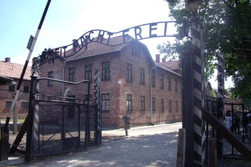 Auschwitz-Birkenau and Wieliczka Salt Mine Guided Tour from Krakow