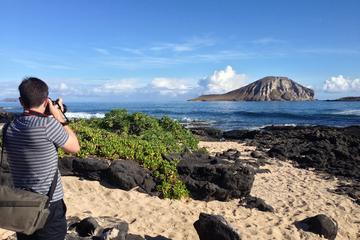 Excursão fotográfica na Ilha de Oahu
