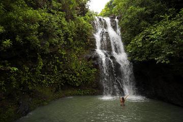 Oahu Private Hiking Tour