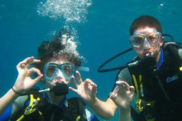 Tauchen in Ibiza: Zertifizierter oder Anfängerkurs