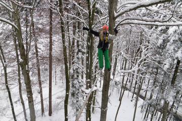 Aventure d'hiver au Seilpark d'Interlaken