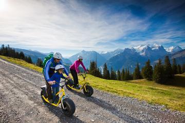 Monster Scooter Tour from Interlaken