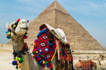 Tour to Cairo and the Pyramids from EL Gouna by Private Vehicle