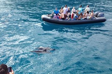 Schnorchel- und Rafting-Abenteuer an der Küste von Na Pali