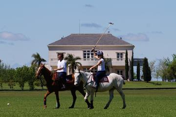 Become a Polo Player: Day Trip to Puesto Viejo