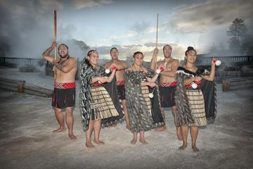 Recorrido turístico, por Whakarewarewa, aldea The Living Maori con...