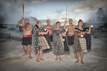 Whakarewarewa, visite guidée du village maori vivant avec repas hangi...