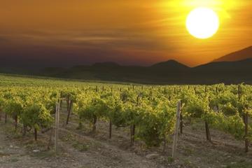 Eger-Weinregion-Tagesausflug ab...