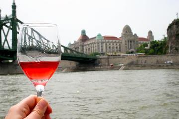 Excursão privada: Cruzeiro Degustação de Vinho Rio Danúbio em...