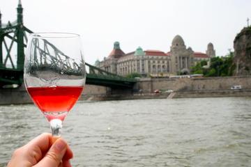 Excursión privada: Crucero de cata de vinos por el río Danubio en...