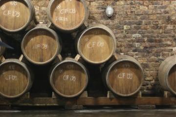 Excursion d'une journée dans la région viticole de Villány au départ...