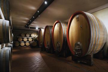 Recorrido privado: Excursión de un día a la región vinícola de...