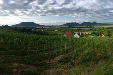 Small-Group Somló and Northern Balaton Wine Day Trip from Budapest