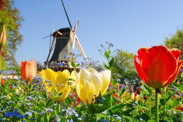 Keukenhof Garden, Flower Fields Tour ...