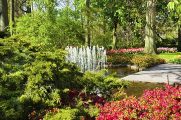 Heldagstur till Keukenhof-parken från Amsterdam inklusive guidat ...